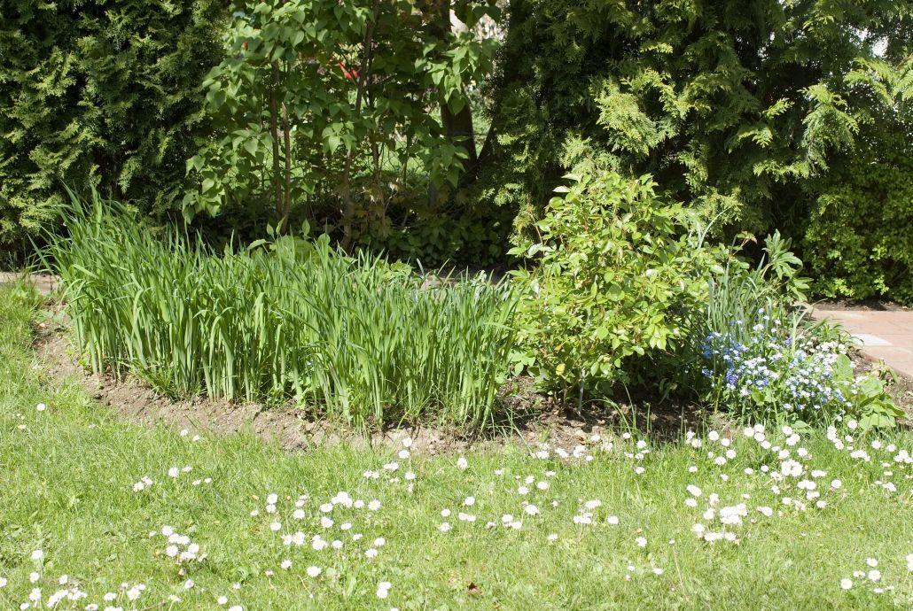 Garten Umgestaltung München
