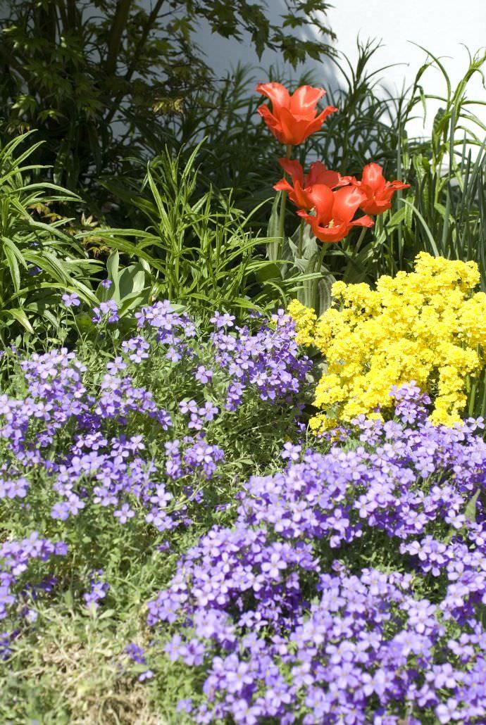Naturgarten gestalten